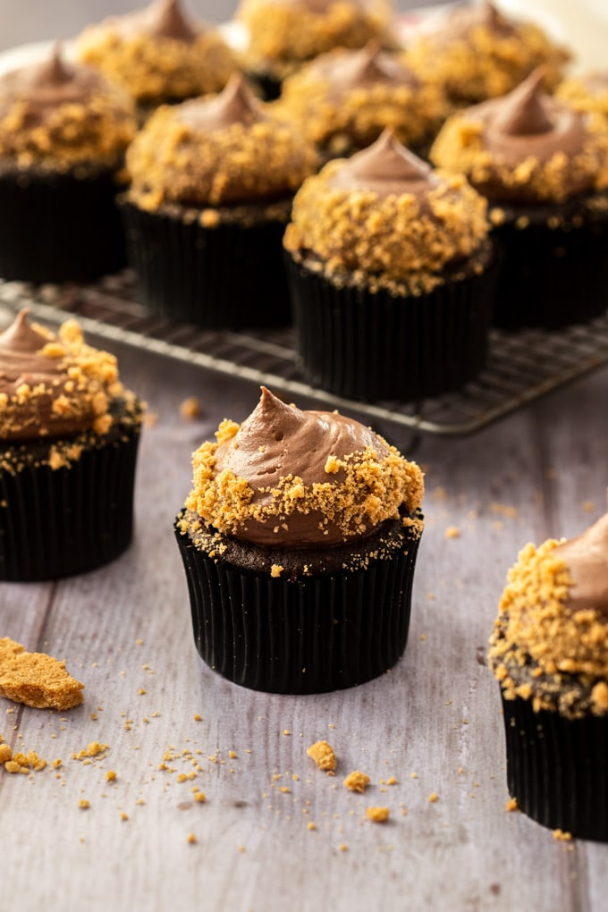 Chocolate Cheesecake Cupcakes