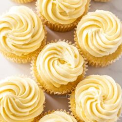 Top down view of a batch of vanilla cupcakes sitting close together