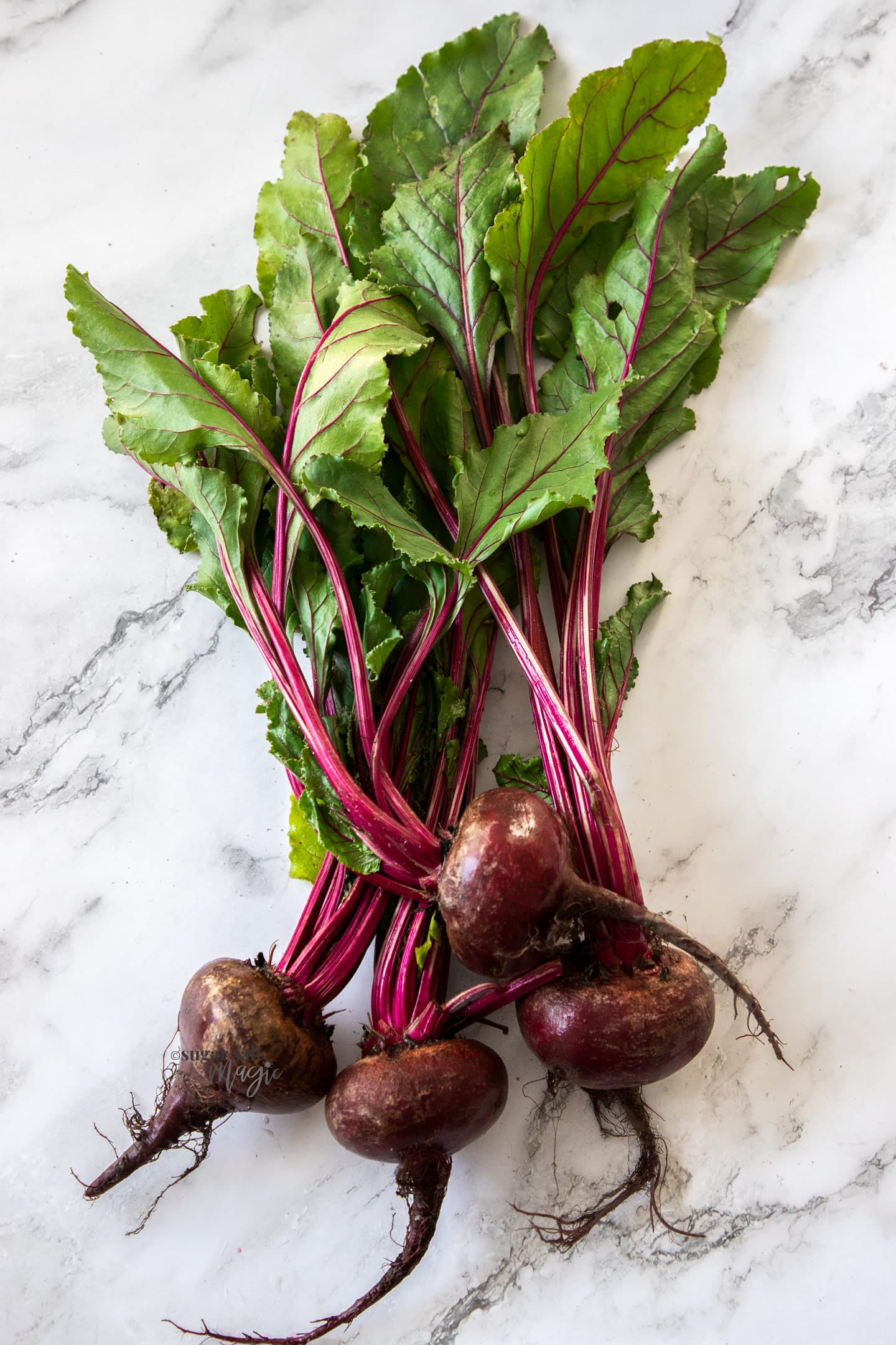 Top down view of 4 beetroot with bright green leaves