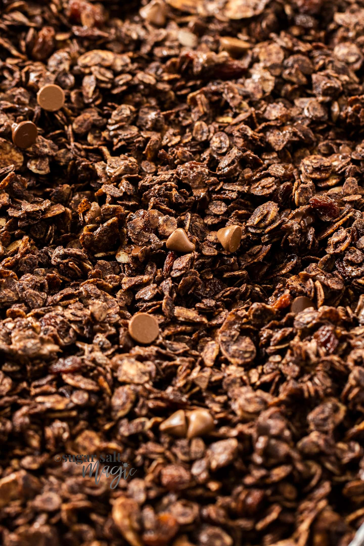 Closeup of chocolate granola.