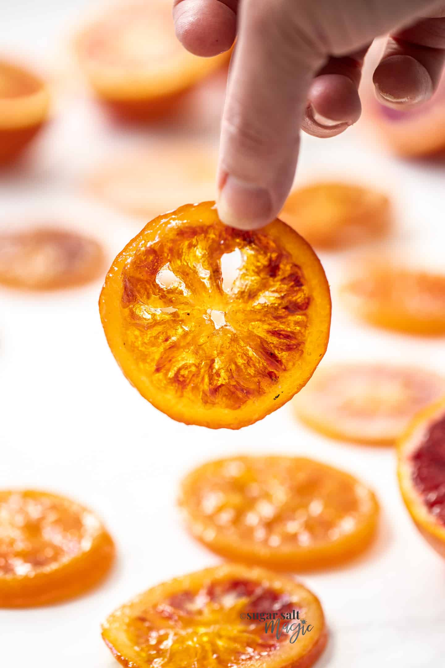 A hand holding up a candied orange slice in the light.