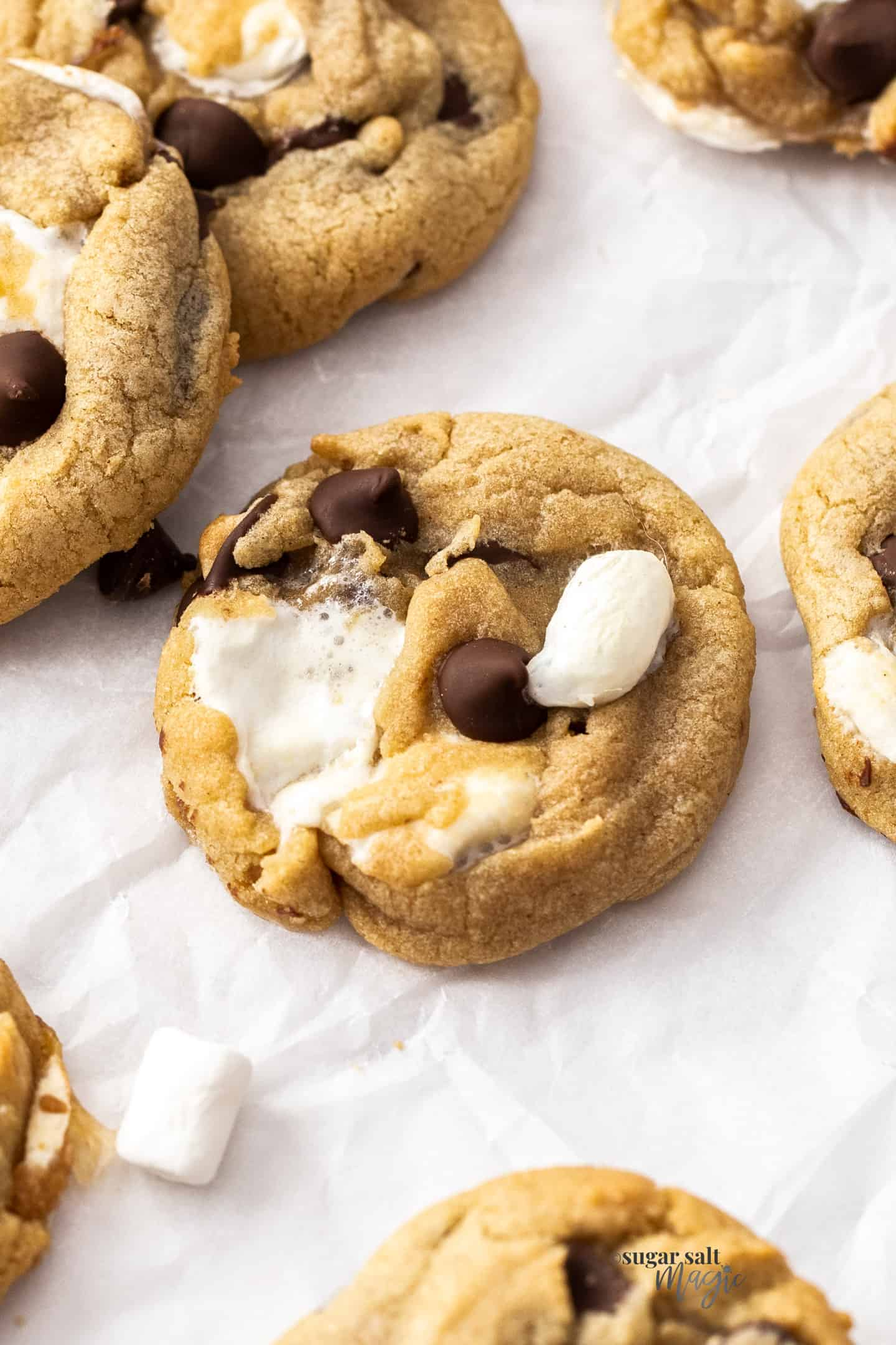 Closeup of a single marshmallow chocolate chip cookie.