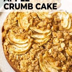 Top down view of apple crumb cake.